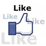 Meer Facebook fans krijgen via je website?