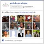 WordPress Facebook widget
