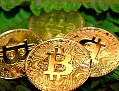 Crypto Cursus volgen? De beste 5 gratis Crypto en Bitcoin Cursussen van Nederland!